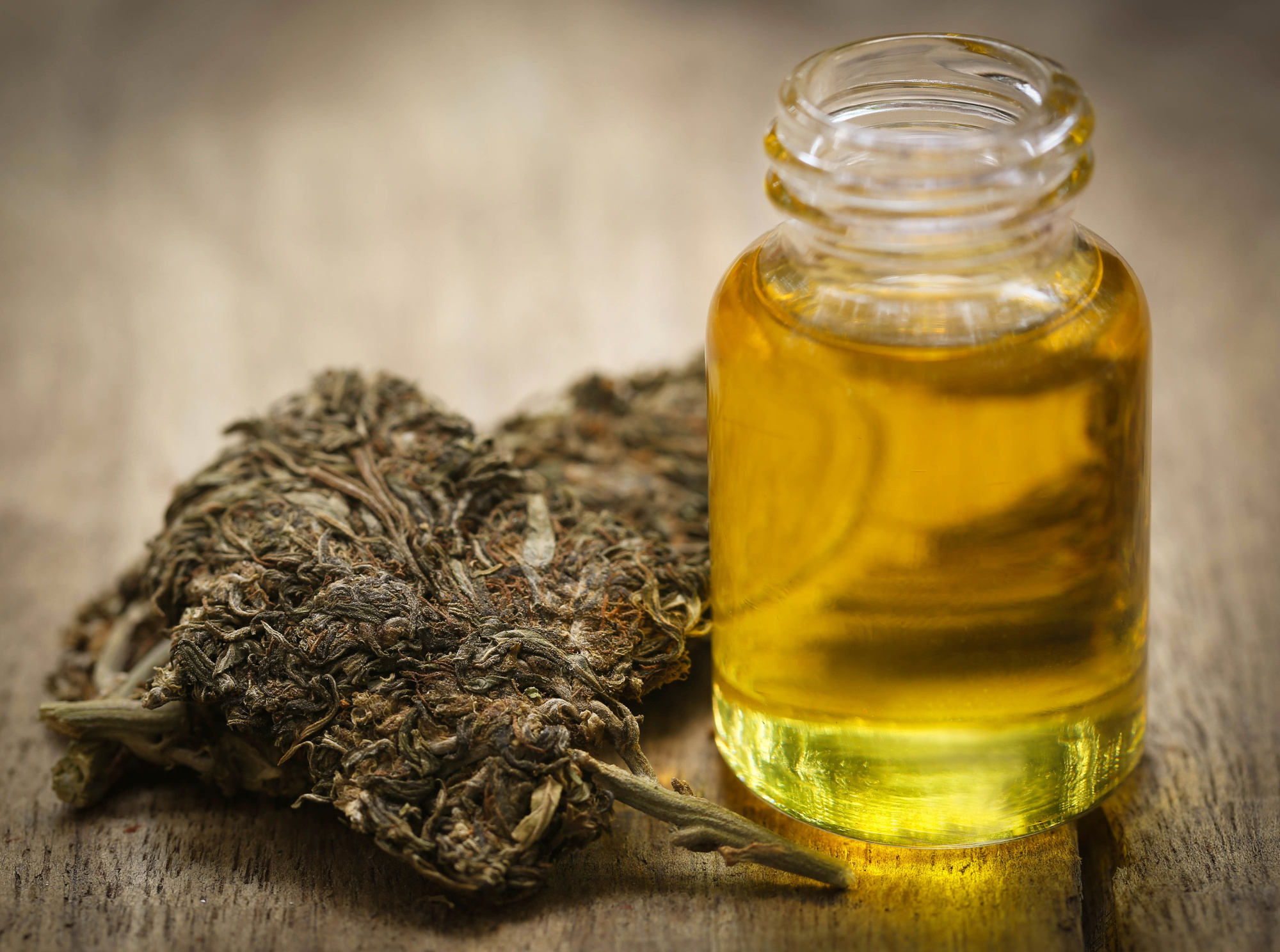 Hemp Oil Affiliate Programs - What are the Best Hemp Oil Affiliate Programs?